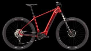 e-Bikes Mountainbike BIXS Core E32