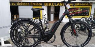 e-Bikes Tourenvelo BULLS Bulls Iconic E1