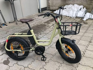 e-Bikes Andere BENNO Remi Demi