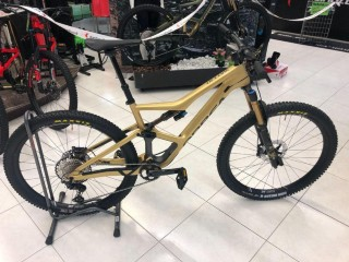 Bikes Mountainbike ORBEA Occam Custom M10