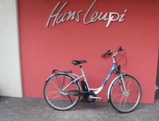 e-Bikes Citybike GEPIDA Reptila 1000