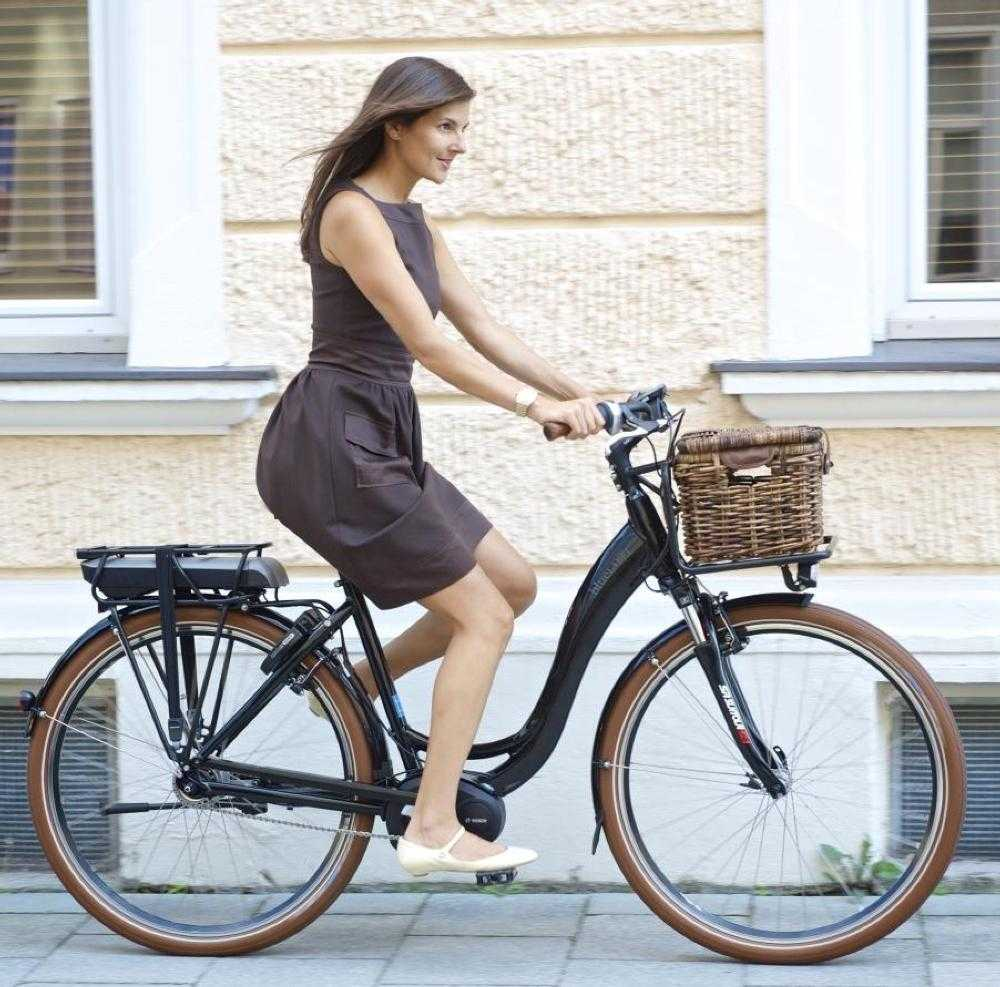 e bike kaufen riese m ller bluelabel komfort light. Black Bedroom Furniture Sets. Home Design Ideas