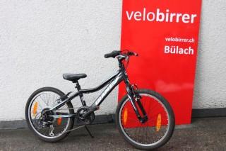 Bikes Mountainbike GIANT revel