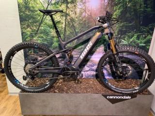 e-Bikes Mountainbike BIXS SAUVAGE EX