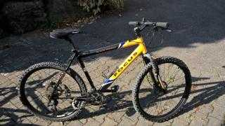 Mountainbike kaufen: FOCUS Black Forest Occasion
