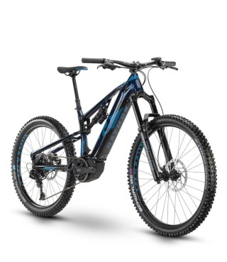 e-Bikes Mountainbike RAYMON Trailray 9.0