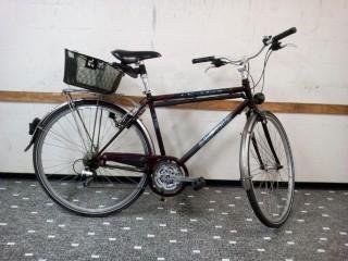 Bikes Citybike ALPINA Orlando