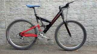 Mountainbike kaufen: CANNONDALE Super V 600 Occasion
