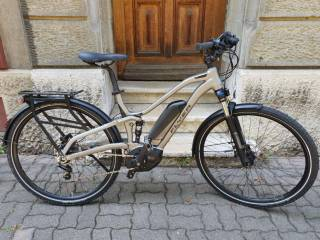 e-Bikes Mountainbike FLYER TX 7.00