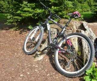 Mountainbike kaufen: KTM Maggie May Occasion