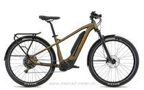 e-Bikes Mountainbike FLYER GOROC2 6.50