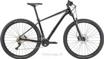 Mountainbike kaufen: CANNONDALE TRAIL 3 XXL 29