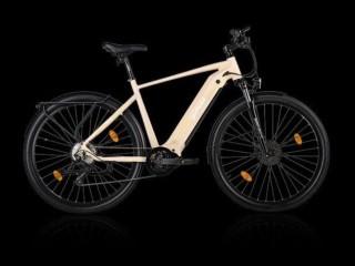 e-Bikes Tourenvelo GOFLOW TB-250