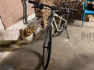 Citybike kaufen: IBEX Daily Quest Occasion